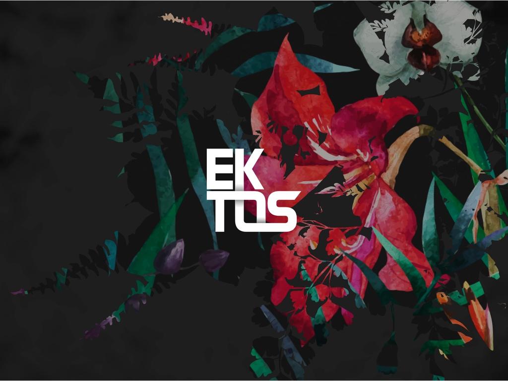 Logotipo desenvolvido pela Chairô para a EKTOS - CHAIRÔ